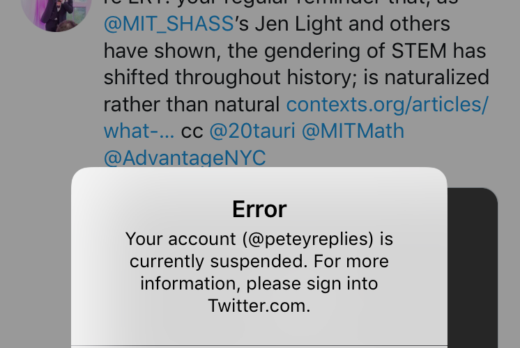 Should I Suspend My Blog To Go And Help >> Twitter Suspended Me For Tweeting Feminist Academic Research Here S